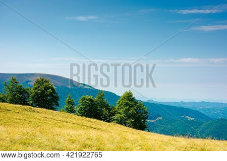 Trees On The Hillside Meadow. Beautiful Mountain Landscape In Summer Afternoon. Clouds On The Sky