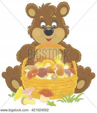 Little Brown Bear Mushroomer Friendly Smiling And Sitting With A Big Wicker Basket Full Of Picked Mu