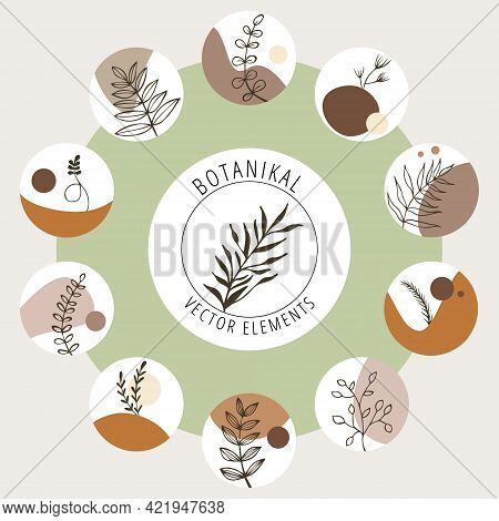 Collection Of Vector Botanical Icons For The Brand. Hand-drawn Vector Trend Set Of Botanical Logos.
