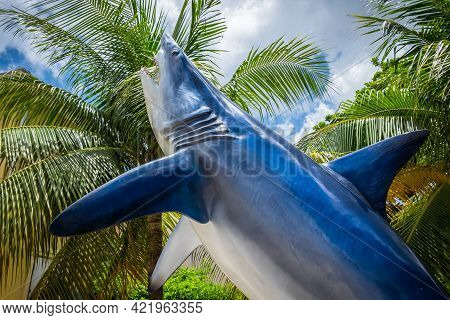 Grand Cayman, Cayman Islands, July 2020, Close Up On A Shark Statue By Guy Harvey A Store And Art Ga