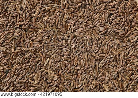 Scattered Caraway Seeds. Dried Caraway Seeds As Food Background. Pile Of Cumin Seeds. Seasoning For