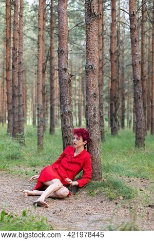 Young Woman In Red Dress Posing In Pine Forest