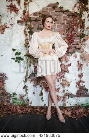 Beautiful fashion model girl in elegant dress with corset on vintage background. Beauty, fashion. Studio portrait.