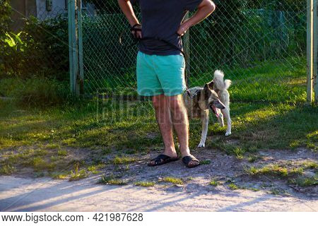 Defocus Young Man With His Dog Standing Outdoor During Summer Day. Hound Dog Seating Through Green G