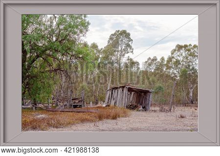 Framed Image Of An Old Timber Slab Shed Tipping To One Side As It Slowly Falls Over In The Australia