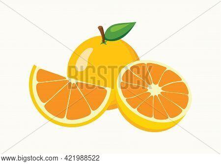 Orange. Fresh Tropical Orange Fruit In Cartoon Style. Half And Ring Vector Orange Slice Isolated On