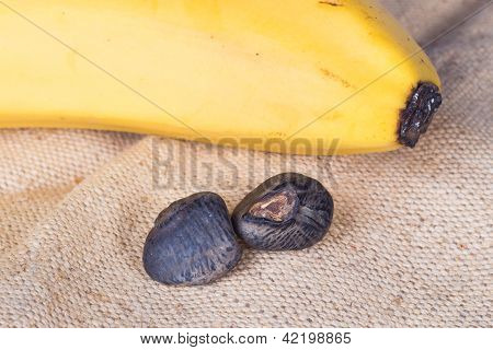 Banana Seeds Closeup