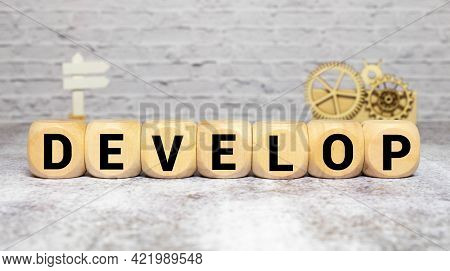 Develop Word Written On Wood Block. Develop Text On Cement Table For Your Desing, Concept.
