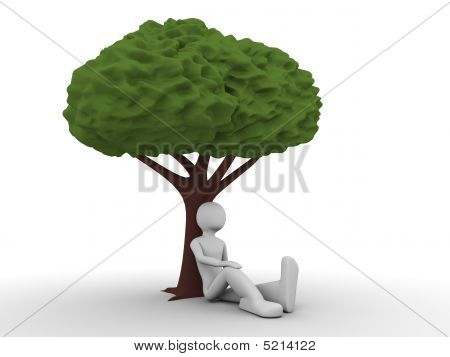 Ecology: Man Sitting Under The Tree