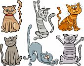 Cartoon Illustration of Cute Cats or Kittens Pet Set poster