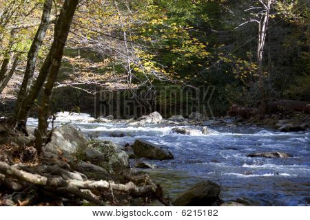 Rapids In The Great Smokey Mountains