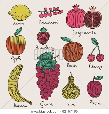 Bright fruit and berries set in vector. Lemon, redcurrant, apple, strawberry, banana, grape, pomegranate, peach, cherry, pear and plum. Tasty card in cartoon style