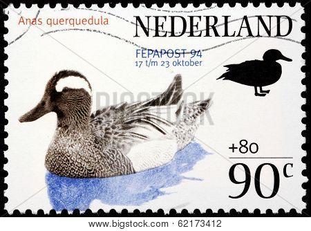 Garganey Stamp