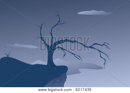 old tree at breakage