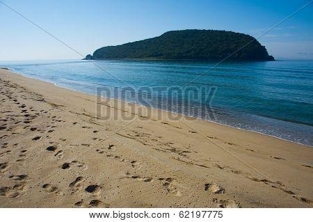 Island Petrova