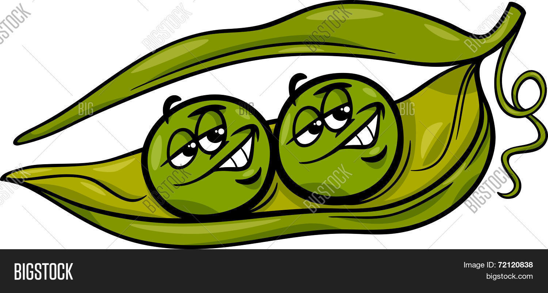 Like Two Peas Pod Vector Photo Free Trial Bigstock