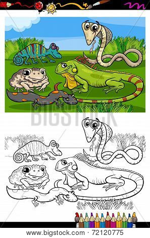 Coloring Book or Page Cartoon Illustration of Black and White Funny Reptiles and Amphibians Group for Children poster