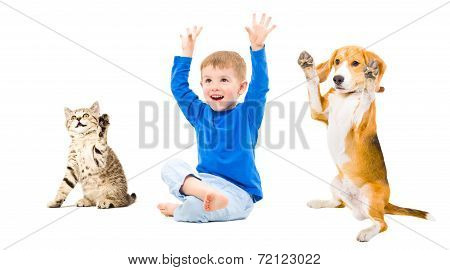 Happy boy, dog and cat