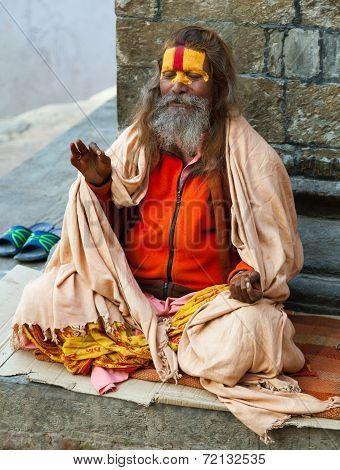 Famous Painted Sadhu