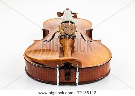 A fine violin viewed from the bottom