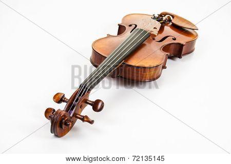 A fine violin on white background