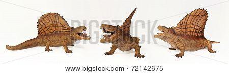 A Dimetrodon Trio, Permian Predatory Reptiles