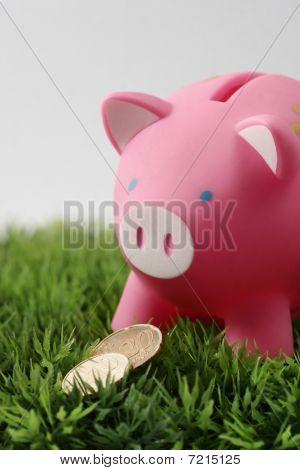 Piggy Bank With Euro Coins