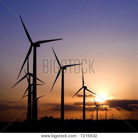 Sunset_windmills_field