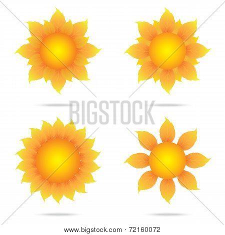Eco Sunflower Set