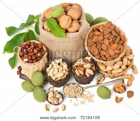 Top view of variety nuts (shelled and in their shells) including almonds cashew hazelnuts brazil nuts peanuts green walnuts with leaves and pine nuts. Isolated on white background poster
