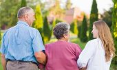 Elderly couple walking in the nature with the carer poster