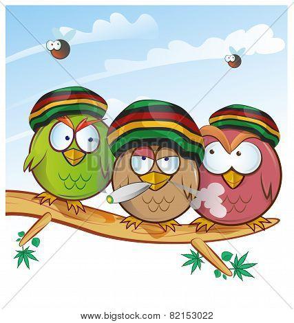 jamaican owl group cartoon