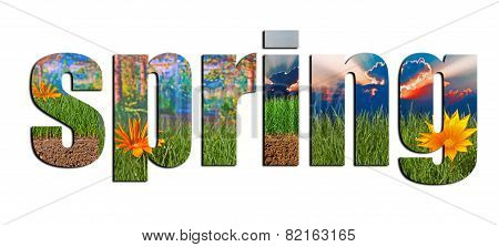 Colorful Spring Images Inside Spring Text On A White Background