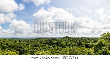 Panoramic View Of Rainforest And Mayan Ruins . Tikal National Park Traveling Through Guatemala.