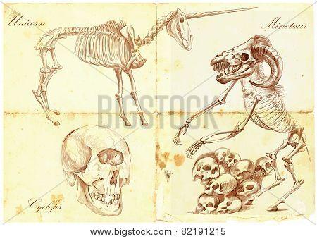 An Hand Drawn Vector: Unicorn, Cyclops, Minotaur