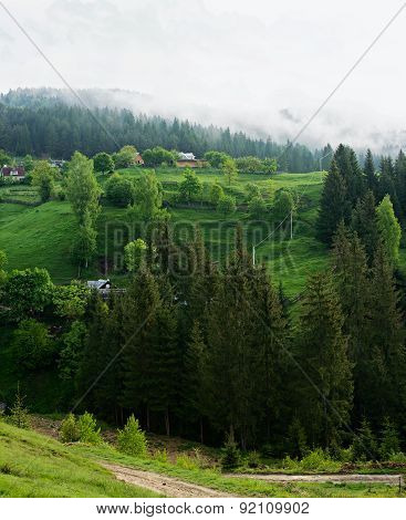 Carpathians mountains in the one muzzy day