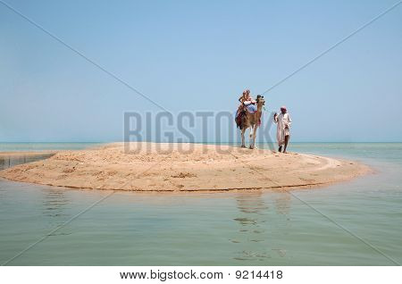 Two children ride a camel on the beach poster