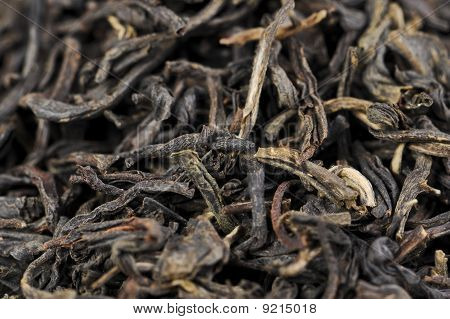Macro Of Lapsang Souchong Tea