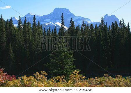 Mount Lougheed In The Autumn