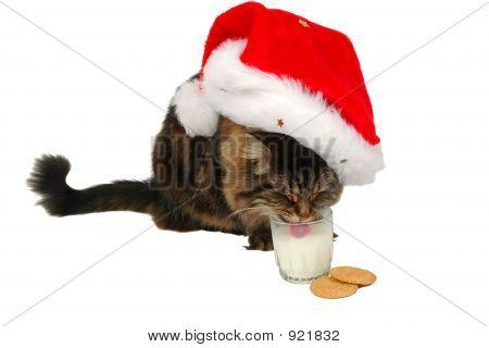 Happy Santa Cat 3