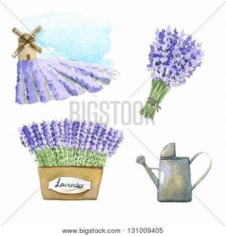 Set of 4 lavender watercolor elements over white