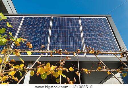 row of solar panels on an office building