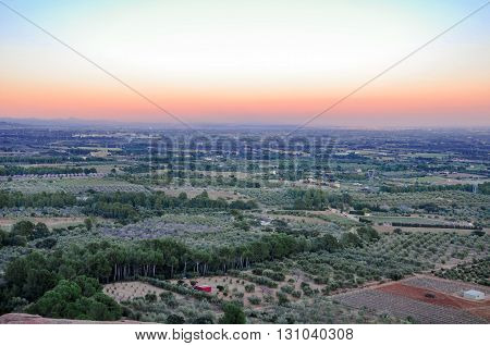 Aerial view of olive groves at sunset. Typical countryside of Mediterranean seaboard. Mont-Roig del Camp Catalonia (Spain).