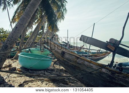 a lot of fishermens boats at seacoast sunrise horisont sea among palms