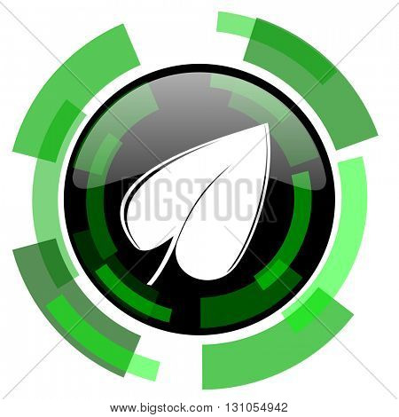 leaf icon, green modern design glossy round button, web and mobile app design illustration