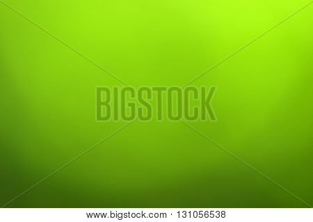 Green blurred background in sunlight
