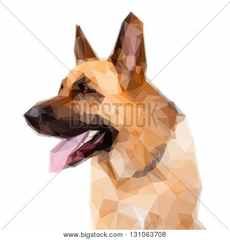Illustration of Geometric German Shepard Dog Portrait on White