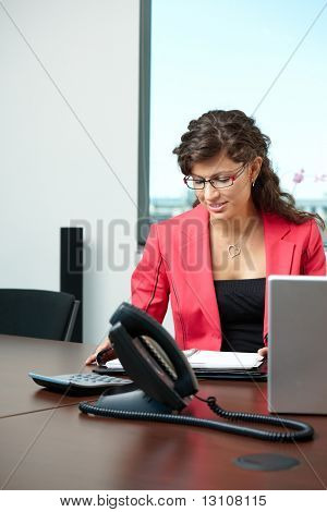 Young businesswoman sitting at desk in office, looking at personal organizer.