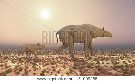 Computer generated 3D illustration with adult Paraceratherium and baby Paraceratherium