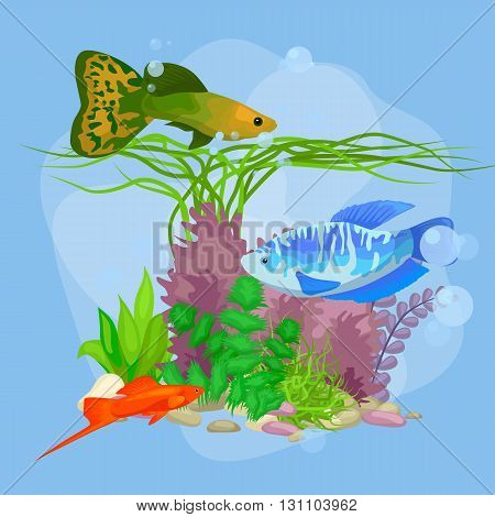 Underwater vector world background with fish, seaweed and bubbles, illustration poster